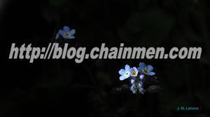Ejemplo de presentacion panoramica full HD 16:9 Power Point pps