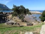 Arboles que rodean el pequeño puerto de Islares Cantabria