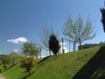 Arboles del paseo y bidegorri de Galindo-Barakaldo