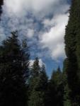 Paseando por la Sierra de Triano